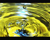 ○●○  my first drops ○ ●○ .. (βάýǒŎǒn~) Tags: nikon drop p90 اول تجربه قطره