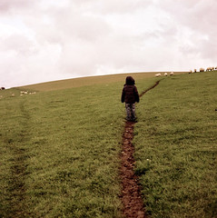 (Brownthing) Tags: boy field grass downs child sheep path autaut