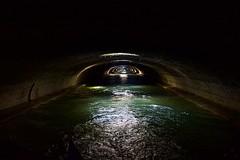Rythmé (mifranc91) Tags: 435 canal d700 eau light lumière nikon1 paris water