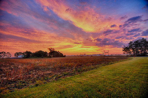 Orange Sky Morning