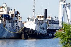 W.N. Twolan (jmaxtours) Tags: tug tugboat wntwolan georgetdaviecolauzonqc 1962 torontoharbour davieshipbuilding