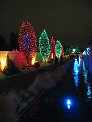 Denver Botanical Garden Light Blooms