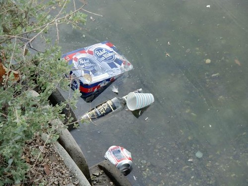 Trash on the Venice Canals, Venice Beach