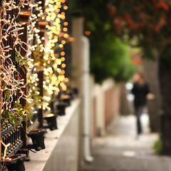 deck the fence:  259/365 (helen sotiriadis) Tags: christmas canon fence lights published day dof bokeh athens depthoffield kefalari canonef100mmf28macrousm canoneos40d toomanytribbles