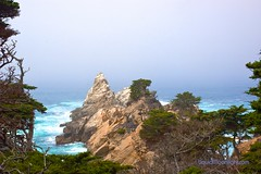 Point Lobo State Park - Carmel California (Darvin Atkeson) Tags: ocean california park trees light sea usa beach rock america forest point us monterey big surf state pacific foam carmel bonsai sur lobo cypress lobos    darvin atkeson  darv   liquidmoonlightcom