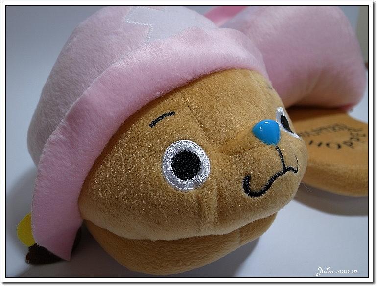 2010~新年禮物 (6)