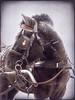 A winter horse:) (raphic :)) Tags: winter horse snow texture nature lumix poland polska panasonic cart harness zima śnieg junks przyroda koń wóz śmieci topseven raphic tekstura impressedbeauty fz8 dmcfz8 uprząż updatecollection redmatrix flickrvault flickrvaultexcellence newgoldenseal mygearandmepremium zaprząg