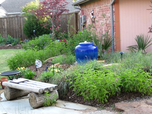 backyard landscape plants