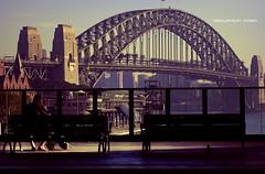 Circular Quay, Sydney (frozenjester) Tags: bridge shadow holiday silhouette architecture photography search nikon sydney australia newsouthwales d200 nikkor dx 2470f28 cropsensor jesteralcaraz frozenjester