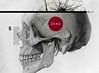 (Miumachi) Tags: dead skull graphicdesign anatomy helvetica compass braindead humanskull makesomethingcooleveryday sofiaajram miumachi