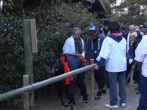 飛鳥坐神社(おんだ祭)@明日香村-03