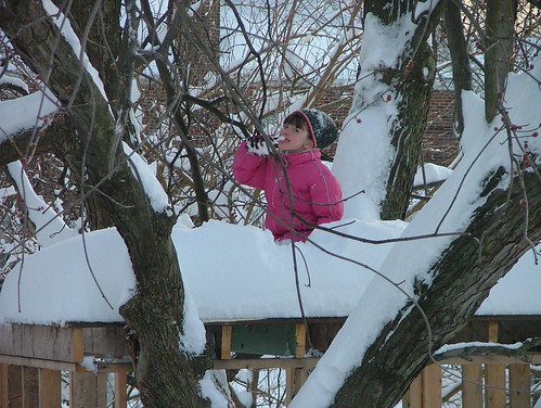 February 2010 snow 052