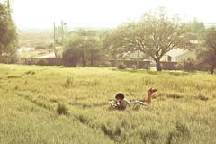 peace [46/365] (emily golitzin) Tags: trees light sun selfportrait me girl grass vintage myself reading book nostalgia neilgaiman project365 365days tamronspaf2875mmf28xrdildasphericalif 46365 fragilethings canoneosdigitalrebelxsi