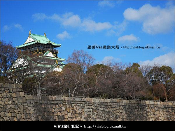 【via關西冬遊記】大阪城天守閣!冬季限定:梅園梅花盛開5