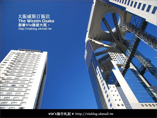 【via關西冬遊記】大阪住宿推薦~The Westin Osake大阪威斯汀飯店6