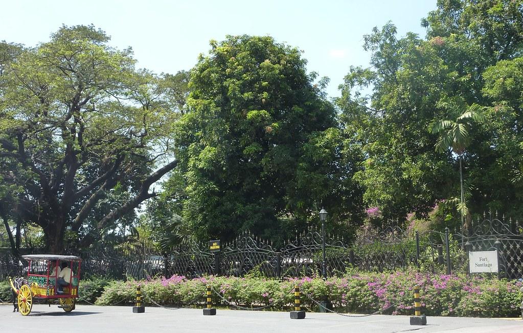 Manille 2010 (19)