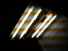 天井の蛍光灯が換え時
