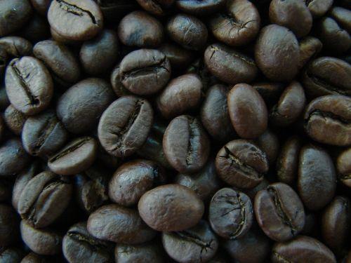 Chicchi di caffè_foto di //MonT3//
