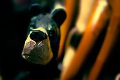 bastón (csm_web) Tags: españa andalucía spain madera pentax perro recuerdo granada boca nariz alpujarra marrón tallado batón cayado pentaxk20d talladoamano alpujarragranadina csmweb tevelez