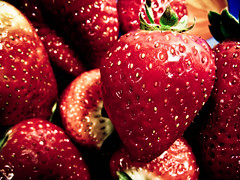 Day 28/365 (Ursula Ortiz) Tags: red fruit canon rojo strawberry day strawberries fruta 365 fresas fresa proyect365 proyecto365 canonpowershotsx200is