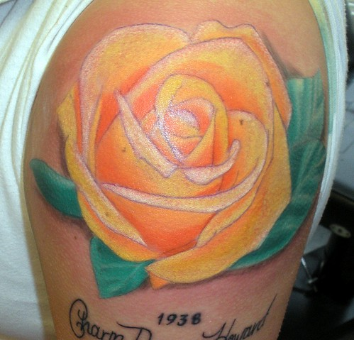 yellow rose by Jennifer Flatley From Jennifer Flatley