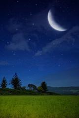 [フリー画像] グラフィックス, フォトアート, 月, 草原, 201105031900