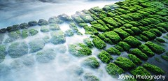 (joyoyo) Tags: park city longexposure bw rock landscape island dawn nikon taiwan bean seashore keelung curd hoping beachscape ndfilter neutraldensityfilter longexposurephotography timeexposurephotography   nd106   joyoyo bwnd106 bwnd64