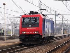 Ed SBB Cargo fu... (Damiano Piovanelli) Tags: italia sbb system ms svizzera sr brescia treno multi trenitalia traxx 484 treni locomotiva rfi sbbcargo re484 e484 multisystem e484001 e484sr sbbcargoitalia 484001 e484sbb traxx2 traxx2ms re484001