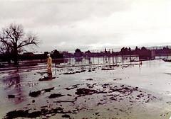 FLOOD_8 (etgeek (Eric)) Tags: permanentebypass creek muddywater carmelterrace blachschool 1983 flood losaltos losaltosfire lafd losaltospublicworks santaclaracountyfloodcontrol wash mud permanentecreek 9682742 altameaddrive