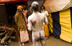 A nude Naga Baba holds forth to disciples at the Kumbh Mela, Haridwar, India (sanjayausta) Tags: pictures people india men festival naked nude religious bath asia nudes bare indian faith religion festivals traditions full holy gathering bottoms take warrior ritual procession bathing nudity population devotees hindu hinduism dip festivities maha crowds baba sanjay babas largest 2010 naga rituals mela nagas advise haridwar the photoessay throngs austa kumbh photodocumentary ascetics