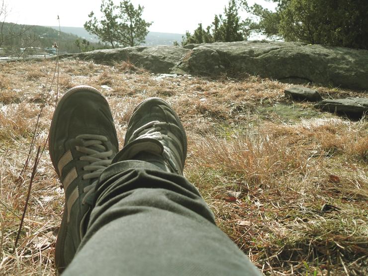 climbed a mountain