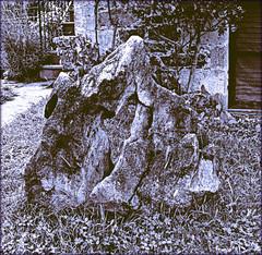Es verdad (keyfreya - carmen) Tags: rural vida campo piedras