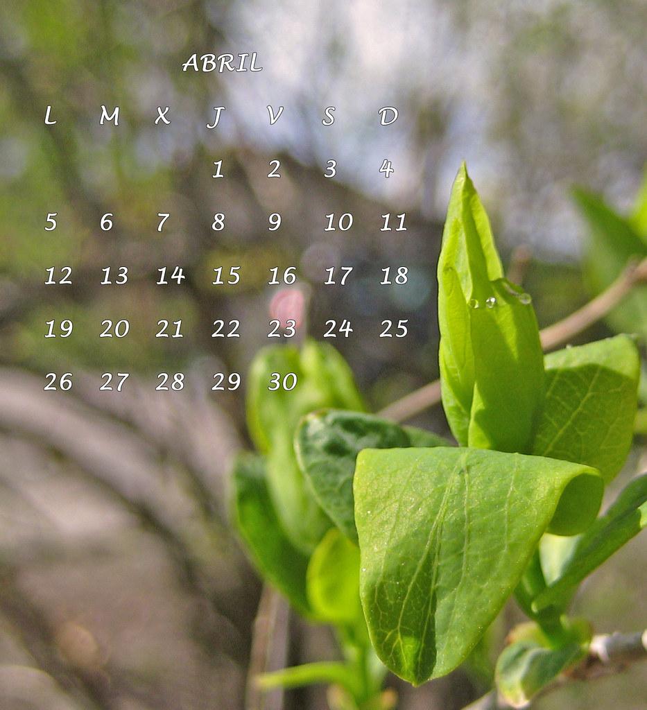 abril 6