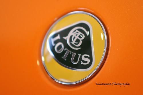 My Lotus 2