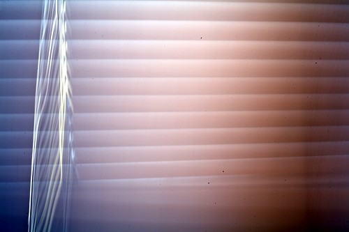 Day 174: My bathroom blinds