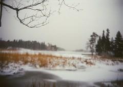 (ZhoraZhoraZhora) Tags: winter sea december mon agat18k repos море декабрь монрепо