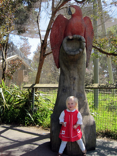 Big Red Bird, Little Red Dress