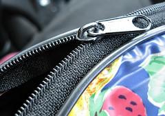 Zipper On A Pouch (aprna) Tags: macro misc zipper cwd 2010yip cwd1701 cwdweek170