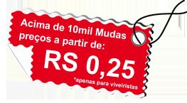 Acima de 10mil Mudas preços a partir de R$ 0,35 (apenas para viveiristas