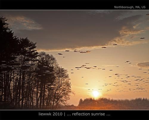 ... a Confuse sunrise ...