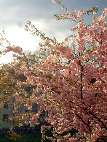 april 058