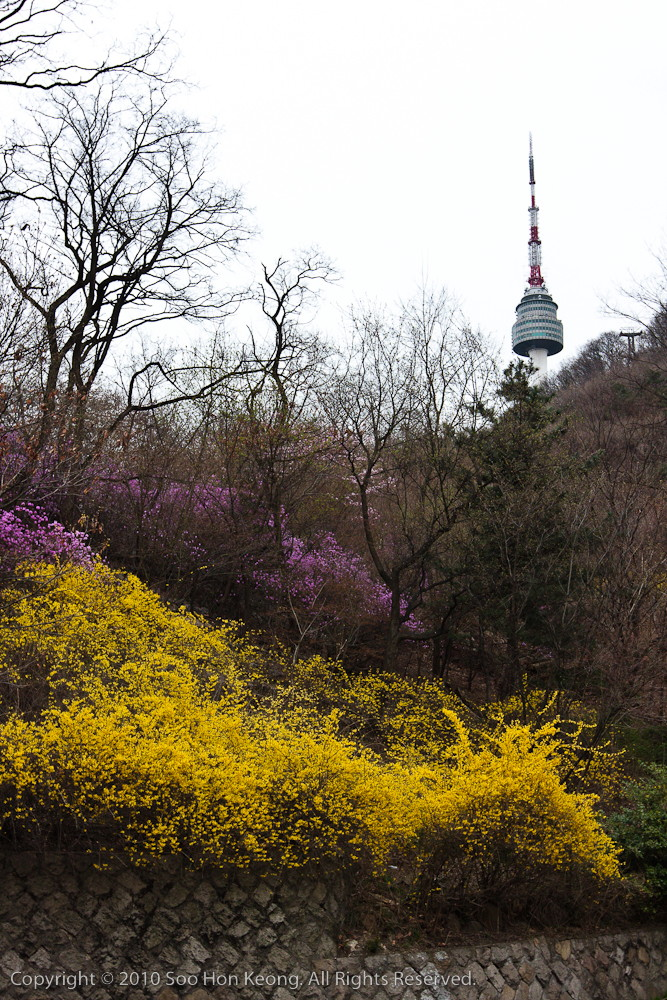 N Seoul Tower @ Seoul, Korea