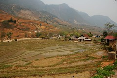 Terraced fields in Sapa (Rosanna Leung) Tags: house mountain field grass landscape village vietnam  sapa      terracedfield