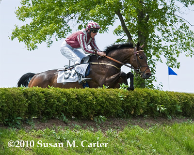 Swimming River jumps a steeplechase bank at the Virginia Gold Cup