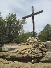 This is the wood of the cross