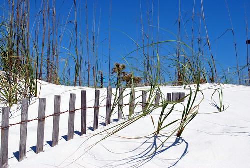 Pensacola Beach 4
