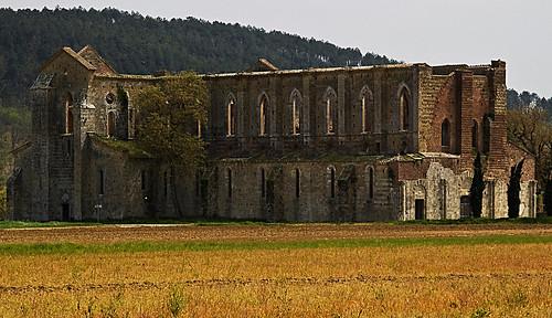 Basilica di San Galgano - Chiusdino (SI)