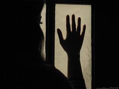 ازدنیا دلگیرم (Mahsa3611) Tags: tree window girl canon hope iran dream memory shiraz ایران mahsa درخت زندگی مصدق شیراز حمید روشنایی