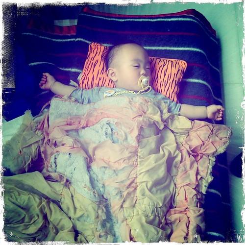 小王子,蓋著菲比乾媽的摸摸
