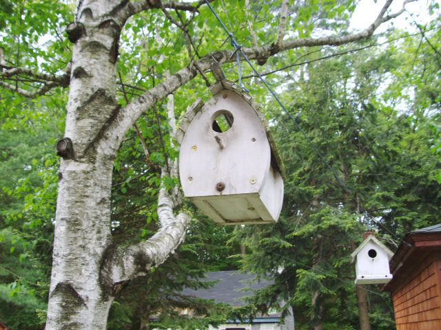 A birdhouse that has seen better days...